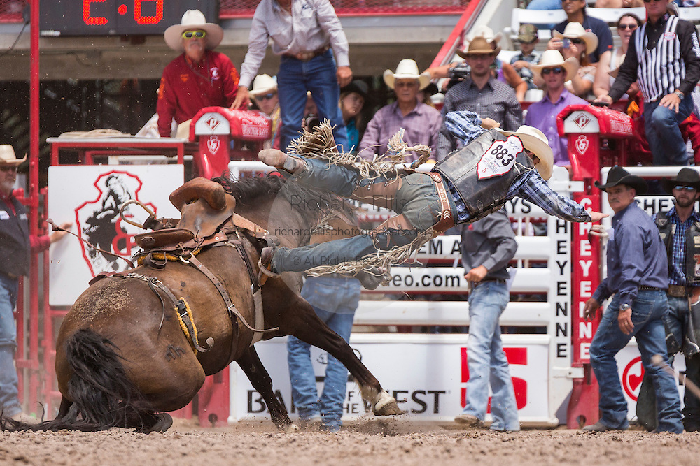 Bareback rider Brad Rudolf is tossed from his bronco during the Bareback Championships at the Cheyenne Frontier Days rodeo in Frontier Park Arena July 26, 2015 in Cheyenne, Wyoming. Frontier Days celebrates the cowboy traditions of the west with a rodeo, parade and fair.