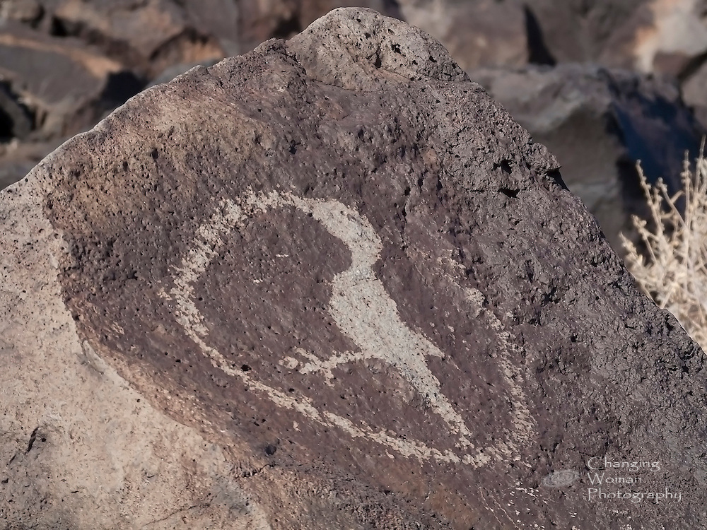 """A bird stands inside a circle that appears to issue from its beak.  According to """"Pueblo Pottery and Its Symbolism"""" (http://www.santarosa.edu/~mbond/PuebloSymbols.pdf), """"birds...are symbols for prayer."""""""