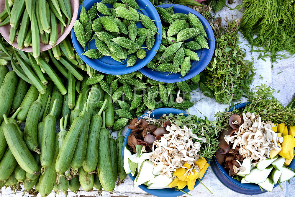 Fresh vegetables including okra, courgettes, bitter gourds and herbs for sale at Hua Kua evening market on the outskirts of Vientiane, Lao PDR. A large variety of local products are available for sale in fresh markets all over Laos, all being sold on small individual stalls.