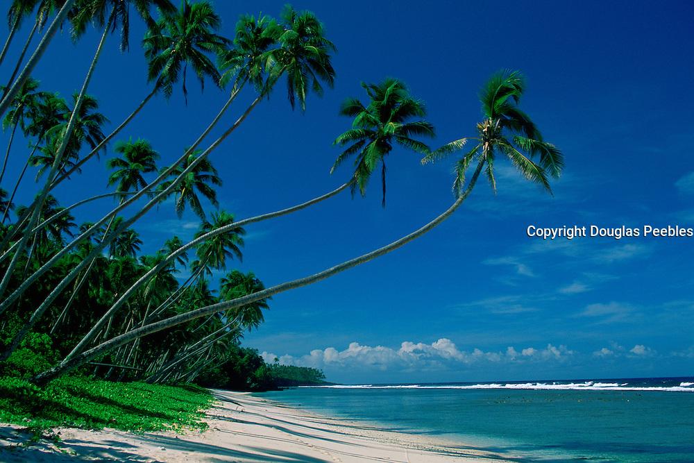 Beach, South Pacific<br />