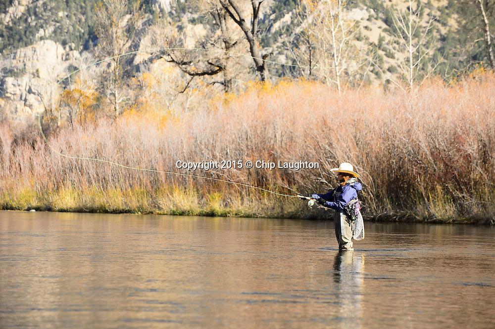 Woman fly fishing Montana stock photo image