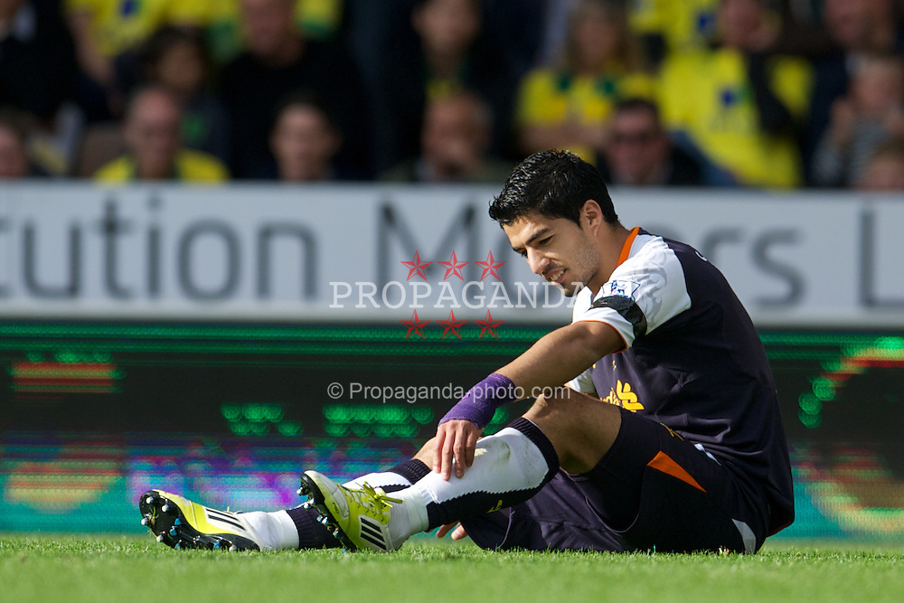 NORWICH, ENGLAND - Saturday, September 29, 2012: Liverpool's Luis Alberto Suarez Diaz sits dejected on the floor after another blatant penalty appeal is turned down by a referee during the Premiership match at Carrow Road. (Pic by David Rawcliffe/Propaganda)