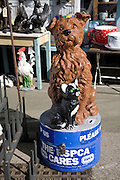 RSPCA dog and cat collection box, Aldeburgh, Suffolk