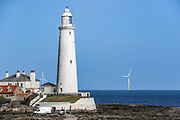 A general overview shows the Lighthouse tower of St. Mary's Island on Wednesday, March 17, 2021 - which is a small sandstone island near the seaside resort of Whitley Bay in the north of England. It is a Local Nature Reserve. Located in the seaside town on the northeast coast of England, it is administered as part of the borough of North Tyneside in Tyne and Wear. (Photo/ Vudi Xhymshiti)