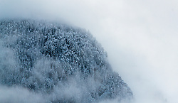THEMENBILD - angeschneite Bäume im Nebel, aufgenommen am 07. November 2016, Kaprun, Österreich // Snow covered trees in the fog in Kaprun, Austria on 2016/11/07. EXPA Pictures © 2016, PhotoCredit: EXPA/ JFK