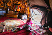 A young Tsaatan reindeer herder child looking outside from the warmth of her teepee in the mountains, Khovsgol Province, Mongolia