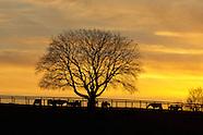 Orange County NY Farms