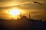 Turkije, Istanbul, 4-6-2011De Suleyman moskee, grootste van de stad.Foto: Flip Franssen/Hollandse Hoogte