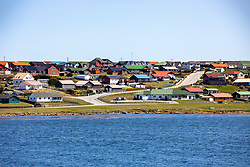 Falkland Island