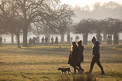 © Licensed to London News Pictures. 09/01/2021. London, UK. Members of the public enjoy a walk and cycle in the Winter sun as Police patrol a busy Richmond Park in South West London as health experts call for the lockdown to be made tougher. This week, Prime Minister Boris Johnson plunged England into a 3rd lockdown as he ordered schools to close and workers to work from home as the government brings in the army to ramp up vaccinations across the country. Photo credit: Alex Lentati/LNP