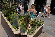 A woman shopper rests in the heatwave next to a street shrub planter box on Regent Stret on Covid 'Freedom Day'. This date is what Prime Minister Boris Johnson's UK government has set as the end of strict Covid pandemic social distancing conditions with the end of mandatory face coverings in shops and public transport, on 19th July 2021, in London, England.