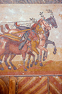 close up of horses pulling a chariot racing at the Circus Maximus Chariot racing at the Circus Maximus from the Palaestra room no 15.. Roman mosaics at the Villa Romana del Casale which containis the richest, largest and most complex collection of Roman mosaics in the world. Constructed  in the first quarter of the 4th century AD. Sicily, Italy. A UNESCO World Heritage Site. .<br /> <br /> If you prefer to buy from our ALAMY PHOTO LIBRARY  Collection visit : https://www.alamy.com/portfolio/paul-williams-funkystock/villaromanadelcasale.html<br /> Visit our ROMAN MOSAIC PHOTO COLLECTIONS for more photos to buy as buy as wall art prints https://funkystock.photoshelter.com/gallery/Roman-Mosaics-Roman-Mosaic-Pictures-Photos-and-Images-Fotos/G00008dLtP71H_yc/C0000q_tZnliJD08