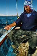 Giant Titicaca Frog in Fishing Net<br />(Largest aquatic frog in the World)<br />Telmatobius culeus<br />Lake Titicaca.  BOLIVIA & PERU  South America