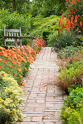 Path in the Cottage Garden at Sissinghurst Castle lined with Arctotis x hybrida 'Flame'