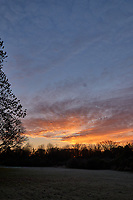 Autumn Backyard Sunrise Panorama. Four of nine images taken with a Leica CL camera and 18 mm f/2.8 lens (ISO 200, 18 mm, f/11, 1/60 sec). Raw images processed with Capture One Pro and the composite created using AutoPano Giga Pro.