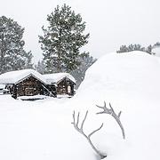 Sapmi Park, Karasjok, Finnmark, Norway, Europe