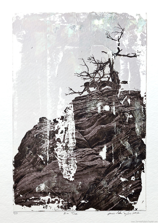 """Description:<br /> A leafless tree stands atop a sandstone formation in Zion National Park,  Utah.<br /> This is a print from my 2012 Photo Transfers solo show at the Ocean City Arts Center in Ocean City, NJ. <br /> <br /> Medium: Acrylic Gel Transfer to Watercolor Paper<br /> <br /> Size: image size is approximately 6"""" x 9"""""""" mounted on 9"""" x 12"""" watercolor paper with a dab of archival quality PVA.<br /> <br /> Edition size:5 <br /> <br /> Note:<br /> Each print is slightly different, due to the transfer process there are differences in the blotches and absence of ink from print to print making each one unique."""