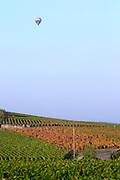 hot air balloon vineyard beaune cote de beaune burgundy france