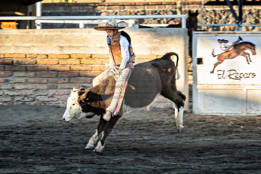 Juan Franco, Jr. rides a steer during a family Charreria practice session in the Jalisco Highlands town of Capilla de Guadalupe, Mexico. The Franco family has dominated Mexican rodeo for 40-years and has won three national championships, five second places and five third places.