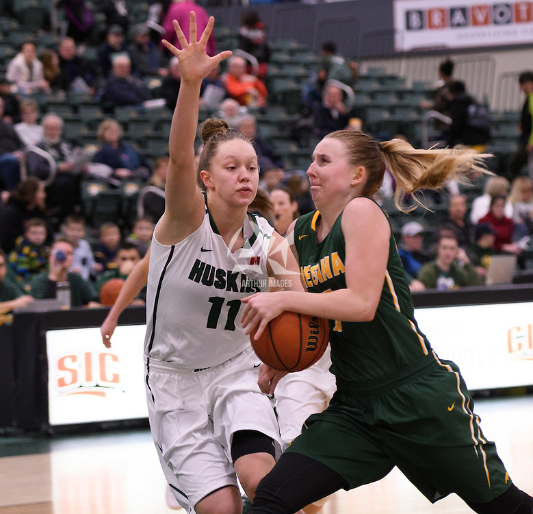 4th year guard Sara Hubenig (7) of the Regina Cougars in action during the home game on December  3 at Centre for Kinesiology, Health and Sport. Credit: Matt Johnson/Arthur Images