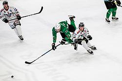 Ice hockey match between HK SZ Olimpija and Steel wings Linz in Round #17 of Alps Hockey League 2019/20, on November 25, 2019, in Hala Tivoli, Ljubljana, Slovenia. Photo by Matic Klansek Velej / Sportida. Photo Grega Valancic / Sportida