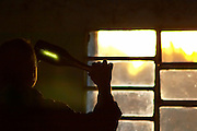 A man holding up a bottle of sparkling wine against the setting sunlight to check the deposit in the bottle, silhouette. Bodega Carlos Pizzorno Winery, Canelon Chico, Canelones, Uruguay, South America