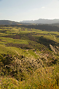 View of rural landscape with fields and hills in background, Ronda, Andalusia, Spain