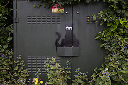 A black cat stencil with stick-on eyes by a street artist dubbed 'Catsy' by appreciative local residents is pictured on 8th June 2021 in Wokingham, United Kingdom. There are believed to be around 30-40 such black cat stencils sprayed around Wokingham by the anonymous street artist.