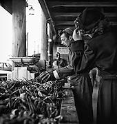 Fisherman's Wharf crab market