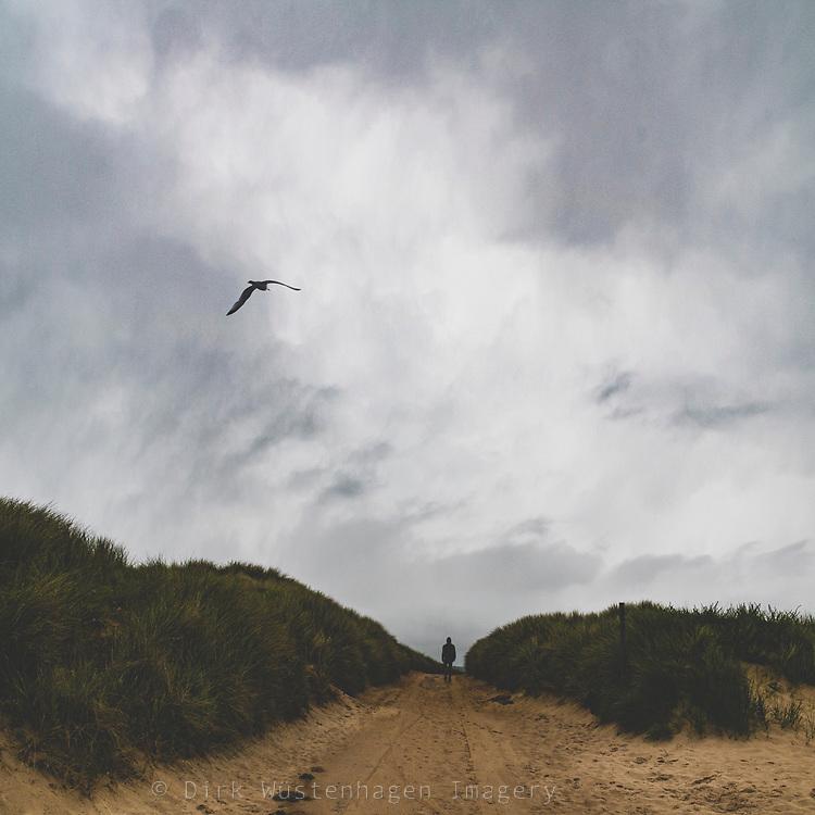 Wanderer auf Weg durch Dühnen, Barnviklle-Carteret, Normandie, Frankreich