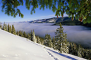 Purcell Mountains in winter from Flatiron Mountain. Kootenai National Forest, Lincoln County, northwest Montana.