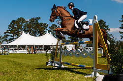 March 22, 2019 - Raeford, North Carolina, US - March 22, 2019 - Raeford, N.C., USA - CAROLINE MARTIN of the United States riding DANGER MOUSE competes in the show jumping CCI-4S division at the sixth annual Cloud 11-Gavilan North LLC Carolina International CCI and Horse Trial, at Carolina Horse Park. The Carolina International CCI and Horse Trial is one of North AmericaÃ•s premier eventing competitions for national and international eventing combinations, hosting International competition at the CCI2*-S through CCI4*-S levels and National levels of Training through Advanced. (Credit Image: © Timothy L. Hale/ZUMA Wire)