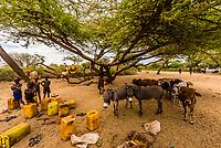 Hamer tribe boys in the Omo Valley, Ethiopia.