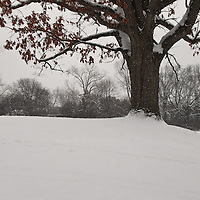 """Once Upon a Hill""<br />