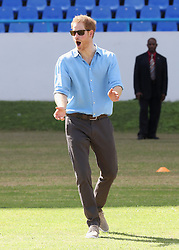 Prince Harry plays cricket with Sir Curtly Ambrose as he attends a youth sports festival at the Sir Vivian Richards Stadium in North Sound, Antigua, on the second day of his tour of the Caribbean.
