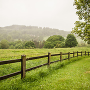 A lush, green field fenced in on a country road outside Painswick in the Cotswolds.