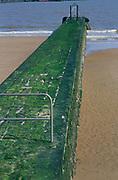 AF5GP2 Large groyne blocking longshore drift Walton on the Naze Essex England