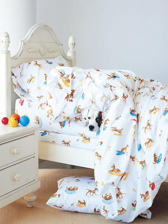 dog hiding under blankets in bed