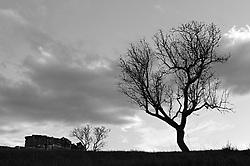 brindisi  - contrada jannuzzo. Situata a circa 12 Km. a nord di Brindisi, zona di interesse naturalistico e archeologico, con insediamento medioevale, chiesa rupestre contenente affreschi del XII e XIV (Cripta di San Biagio). Adiacente la Masseria Giannuzzo (o Jannuzzo) a corte chiusa, dal nome del primo proprietario Bartolomeo de Jannuzzo nel 1596. Attualmente è residenza di varie famiglie che coltivano i terreni limitrofi e allevano ovini.  Da circa un anno sono stati installati impianti fotovoltaici a ridosso dei terreni che circondano la Cripta e sono in corso nuovi cantieri.