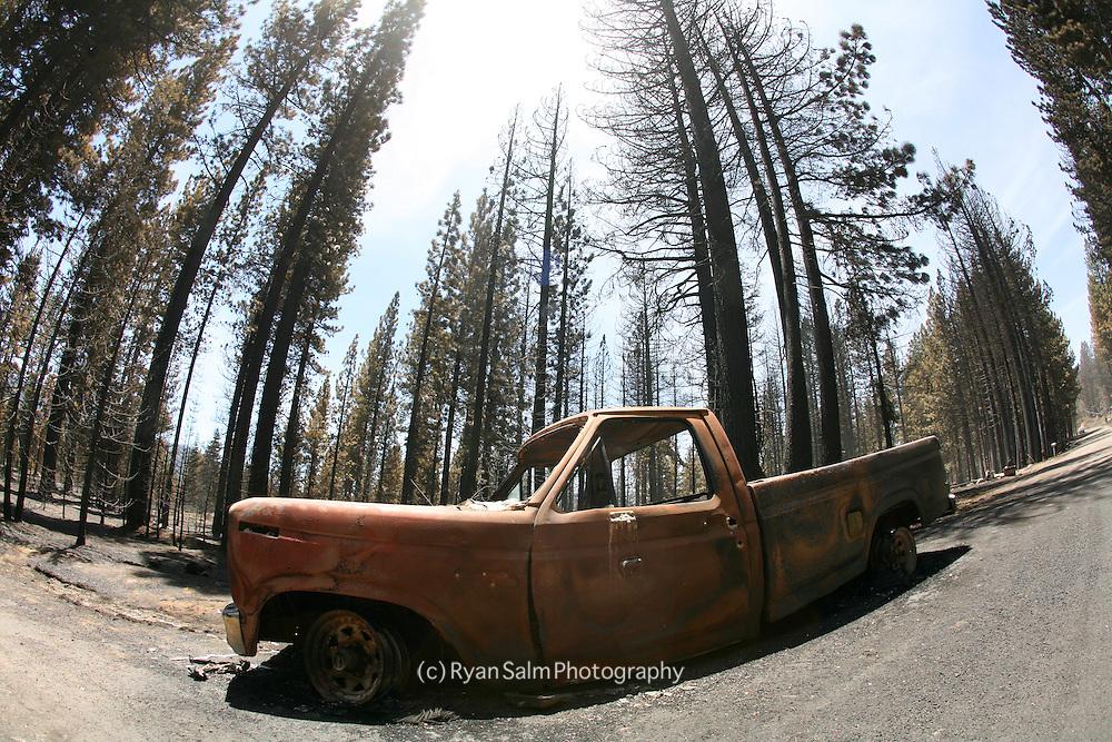 Angora Fire Aftermath