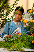 A young Moroccan girl selling flowers in the Ville Nouvelle of Fes, Morocco on Saturday afternoon, June 02, 2007, takes a moment to herself. (PHOTO BY TIMOTHY D. BURDICK)