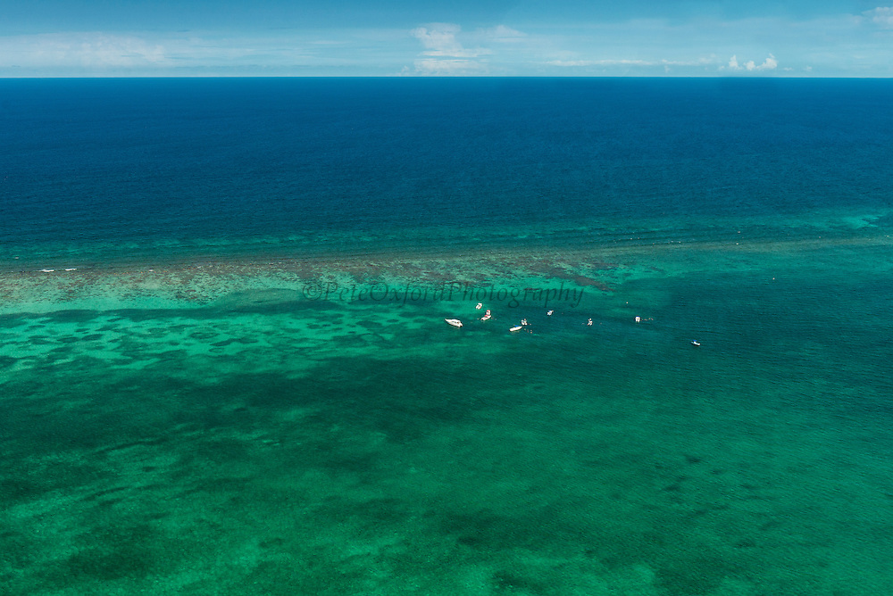 Shark Ray Alley Aerial View<br /> Hol Chan Marine Reserve<br /> near Ambergris Caye and Caye Caulker<br /> Belize<br /> Central America