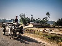 Man riding a bullock cart along the road to Nepalgunj, Nepal.