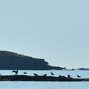 EAGLE ISLAND, Maine -- June 23, 2014 -- Mark Island - Casco Bay Maine as seen from Eagle Island. Photo © Roger S. Duncan 2014.