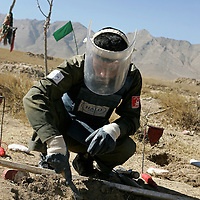 A member of a Halo Trust team searches for mines in a village cemetery. Afghanistan remains one of the most heavily mined countries in the world. A mine clearance team from the Halo Trust have been working for more than a year in the small village of Kohe Safi and have removed 800 mines and 118 unexploded bombs. Kohe Safi, Afghanistan on the 1st of November 2007..Throughout the country the Halo Trust alone is working to clear 90 million square meters of mine fields containing some 640,000 mines, they estimate it will take them 18 years to complete this task..A break through in mine detection not seen since  World War II is due to speed things up in the coming year when Halo become the first civilian organisation to use H-STAMIDS (The Handheld Stand-Off Mine Detection System) a new combination tool with a metal detector and ground penetrating radar system. The H-STAMIDS remain classified and during recent trails in Afghanistan the device had to be returned to the US military at the end of each day. The new equipment should make mine clearance 2-3 times faster.