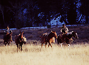 Mark Fisher and Rodolfo Hernandez with horses returning from successful elk hunt, Big Wood River, Sawtooth National Recreation Area, Sawtooth National Forest, Idaho.