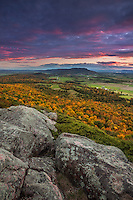 Peak autumn colors and view of Snake Mtn at sunsest from Buck Mtn. Champlain Valley near Vergennes, Vermont