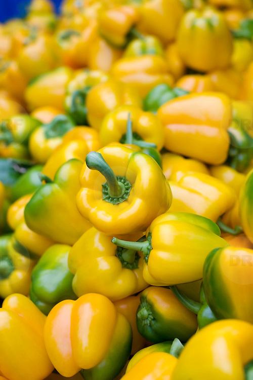 September 2009 20090901 ..Detail paprika paprika's                              ..Foto: David Rozing