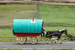 © Licensed to London News Pictures. 31/05/2016. Appleby UK. Members of the Traveller community make their way along the A66 towards the village of Appleby for the annual Appleby Horse Fair that starts on Thursday. Photo credit: Andrew McCaren/LNP