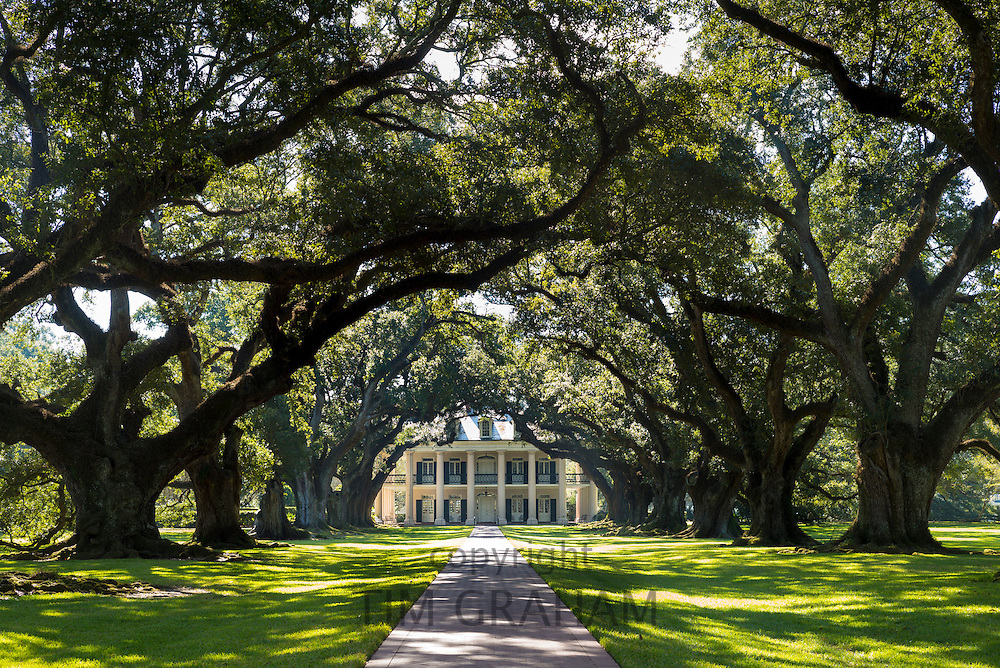 Oak Alley plantation antebellum mansion house and canopy of live oak trees in Mississippi Delta at Vacherie, Louisiana, USA